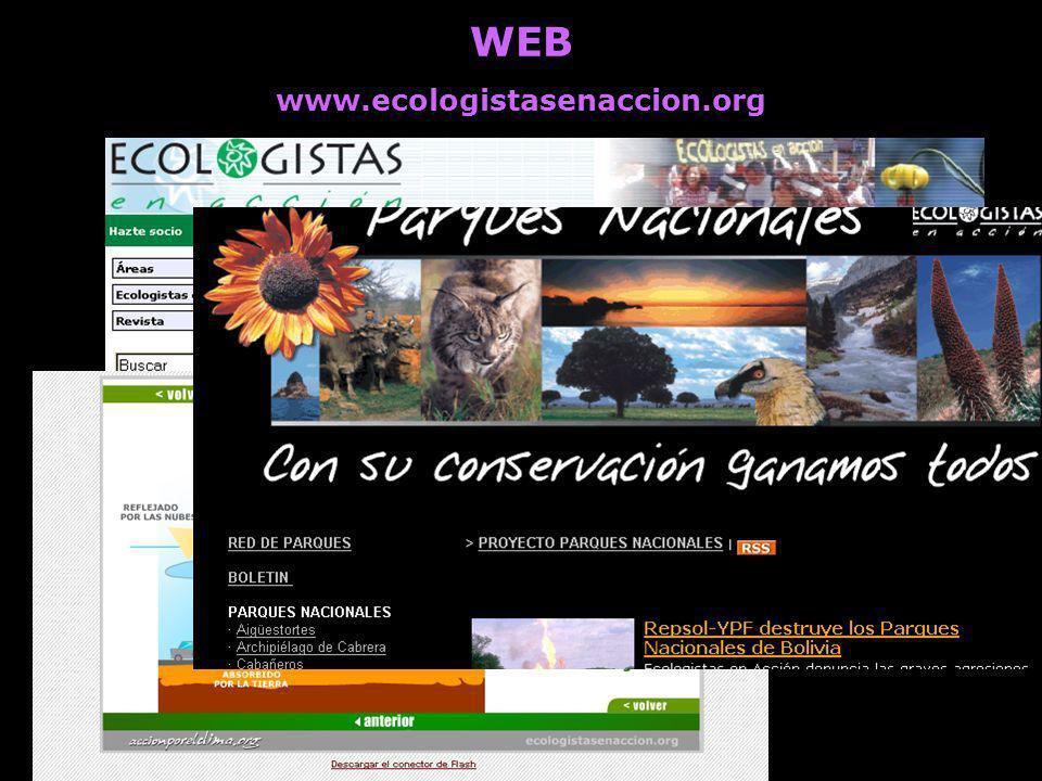 WEB www.ecologistasenaccion.org Información detallada de las actividades de todos los grupos, áreas y federaciones Actualización y gestión autónoma po