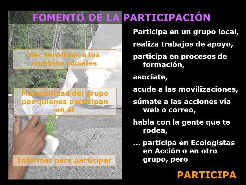 Participa en un grupo local, realiza trabajos de apoyo, participa en procesos de formación, asociate, acude a las movilizaciones, súmate a las accione