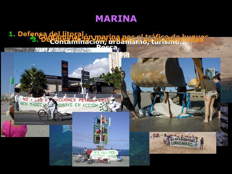 MARINA 2. Contaminación marina por el tráfico de buques 1. Defensa del litoral Contaminación, urbanismo, turismo... Banderas Negras 3. Defensa de la v