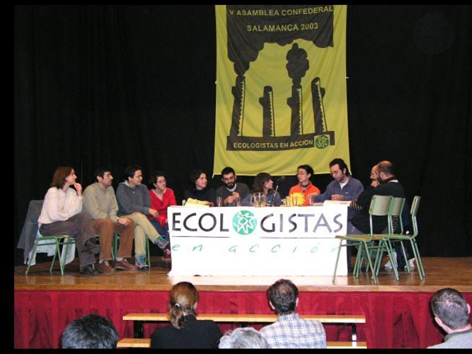 Presencia en el BEE Participación en la Comisión Ejecutiva Búsqueda de alianzas dentro del ecologismo social Apoyo a distintas campañas Seguimiento de Quejas comunitarias Participación en Cumbres mundiales INTERNACIONAL