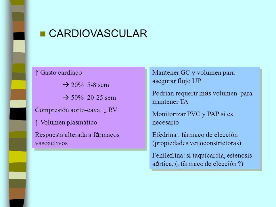 CARDIOVASCULAR Gasto cardiaco 20% 5-8 sem 50% 20-25 sem Compresión aorto-cava. RV Volumen plasmático Respuesta alterada a f á rmacos vasoactivos Gasto