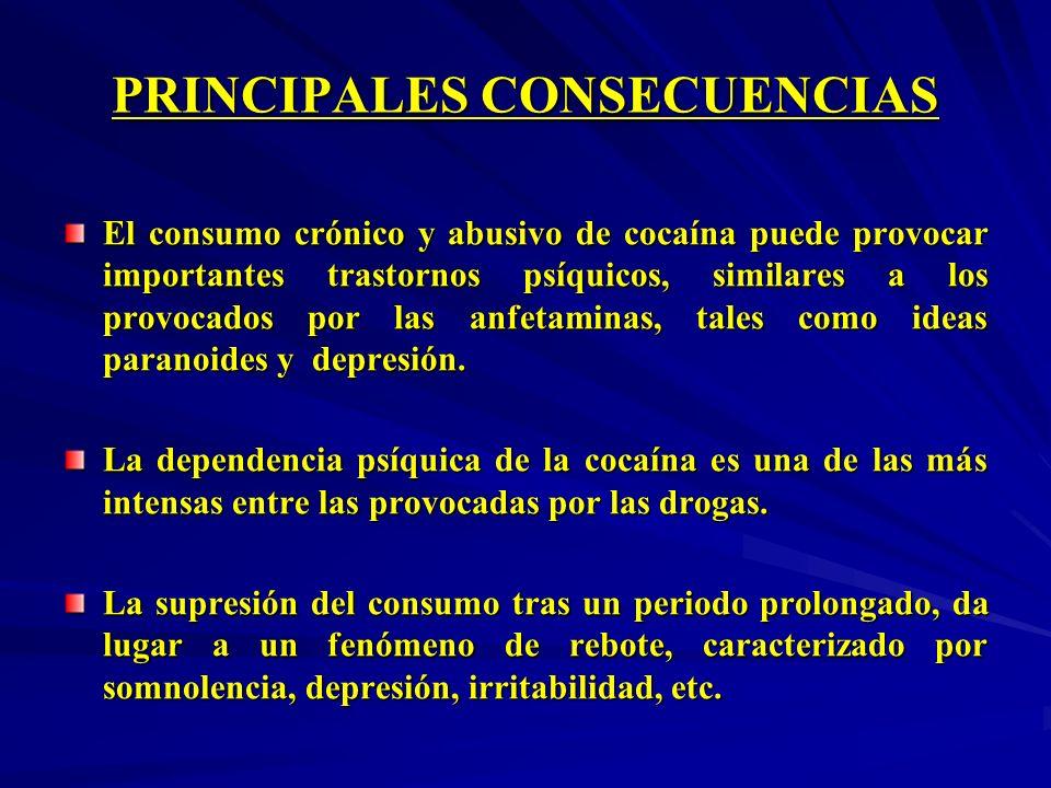 PRINCIPALES CONSECUENCIAS El consumo crónico y abusivo de cocaína puede provocar importantes trastornos psíquicos, similares a los provocados por las
