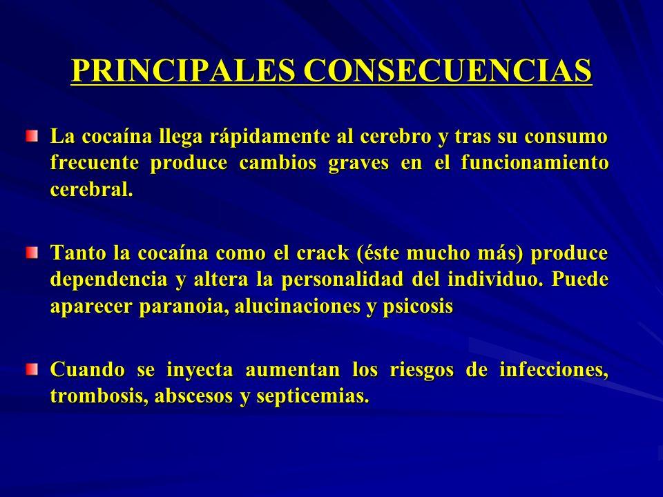 PRINCIPALES CONSECUENCIAS La cocaína llega rápidamente al cerebro y tras su consumo frecuente produce cambios graves en el funcionamiento cerebral. Ta