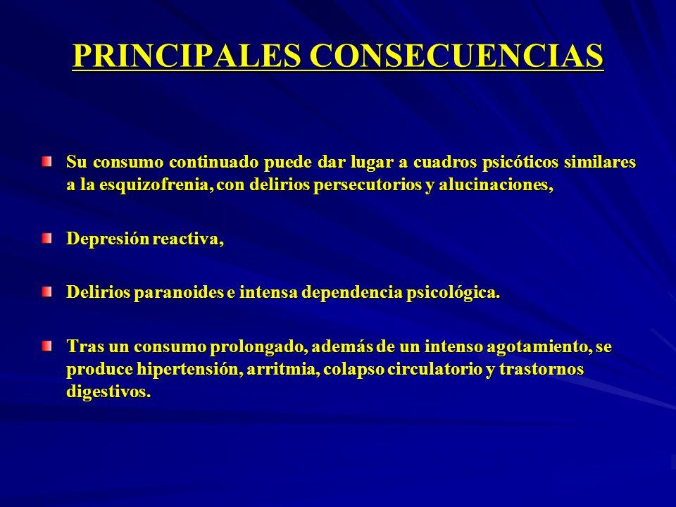 PRINCIPALES CONSECUENCIAS Su consumo continuado puede dar lugar a cuadros psicóticos similares a la esquizofrenia, con delirios persecutorios y alucin