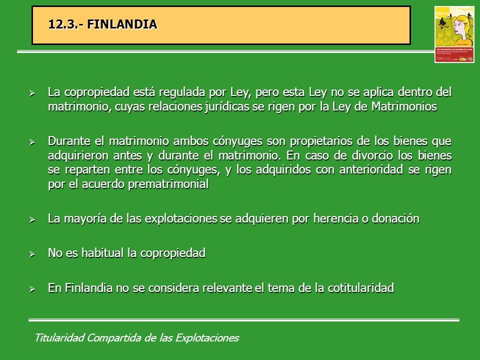 Titularidad Compartida de las Explotaciones 12.4.- IRLANDA Copropiedad o propiedad en común.