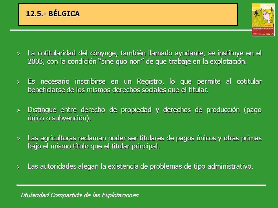 Titularidad Compartida de las Explotaciones 12.5.- BÉLGICA La cotitularidad del cónyuge, también llamado ayudante, se instituye en el 2003, con la condición sine quo non de que trabaje en la explotación.