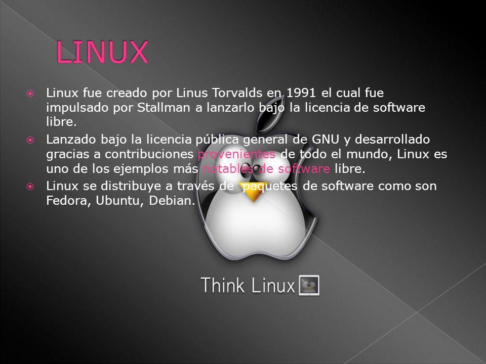 Linux fue creado por Linus Torvalds en 1991 el cual fue impulsado por Stallman a lanzarlo bajo la licencia de software libre. Lanzado bajo la licencia