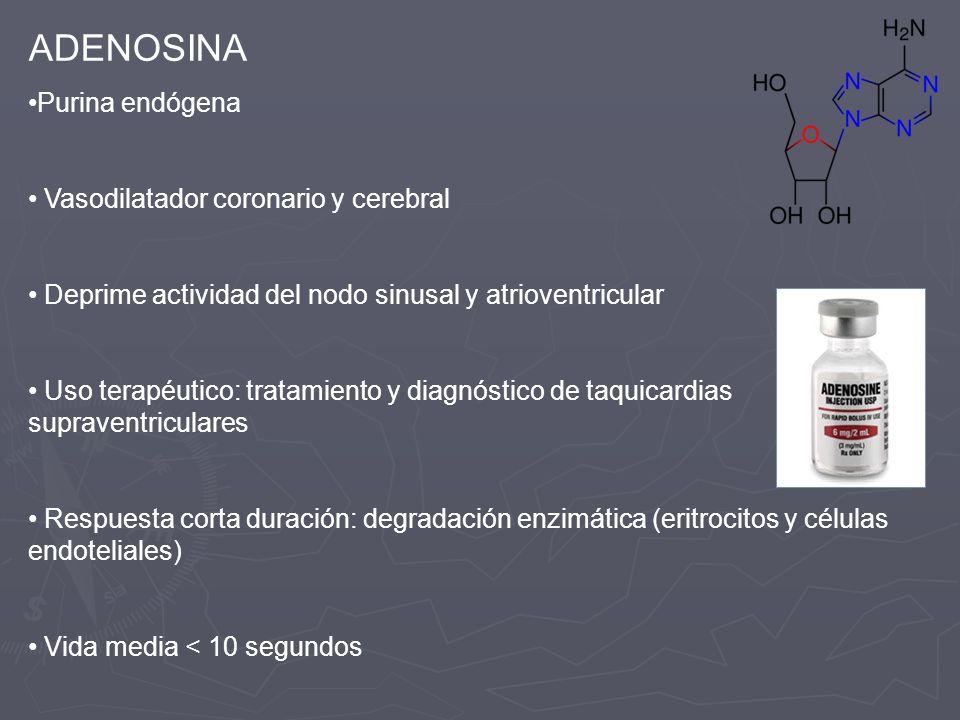 ADENOSINA Purina endógena Vasodilatador coronario y cerebral Deprime actividad del nodo sinusal y atrioventricular Uso terapéutico: tratamiento y diag