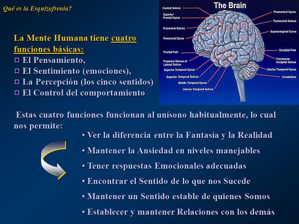 La palabra Esquizofrenia significa Mente Dividida , término que, con frecuencia, no se refiere a la división de la personalidad sino a un trastorno del balance entre las cuatro funciones mentales descritas.