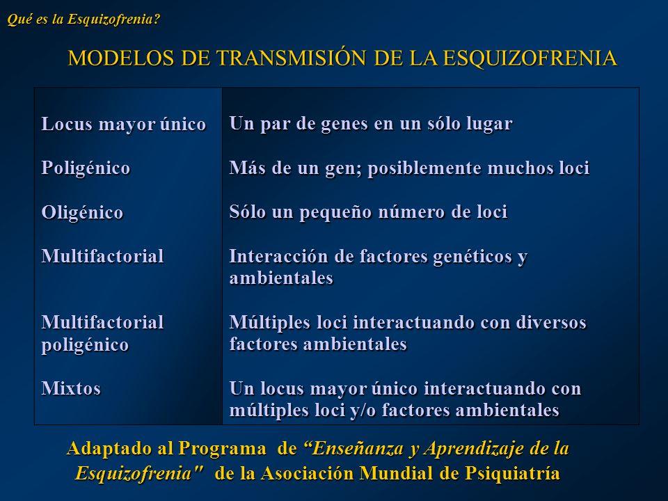MODELOS DE TRANSMISIÓN DE LA ESQUIZOFRENIA MODELOS DE TRANSMISIÓN DE LA ESQUIZOFRENIA Locus mayor único PoligénicoOligénicoMultifactorial Multifactori