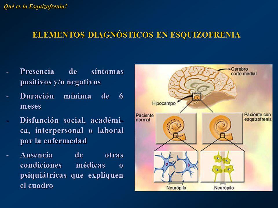 ELEMENTOS DIAGNÓSTICOS EN ESQUIZOFRENIA -Presencia de síntomas positivos y/o negativos -Duración mínima de 6 meses -Disfunción social, académi- ca, in