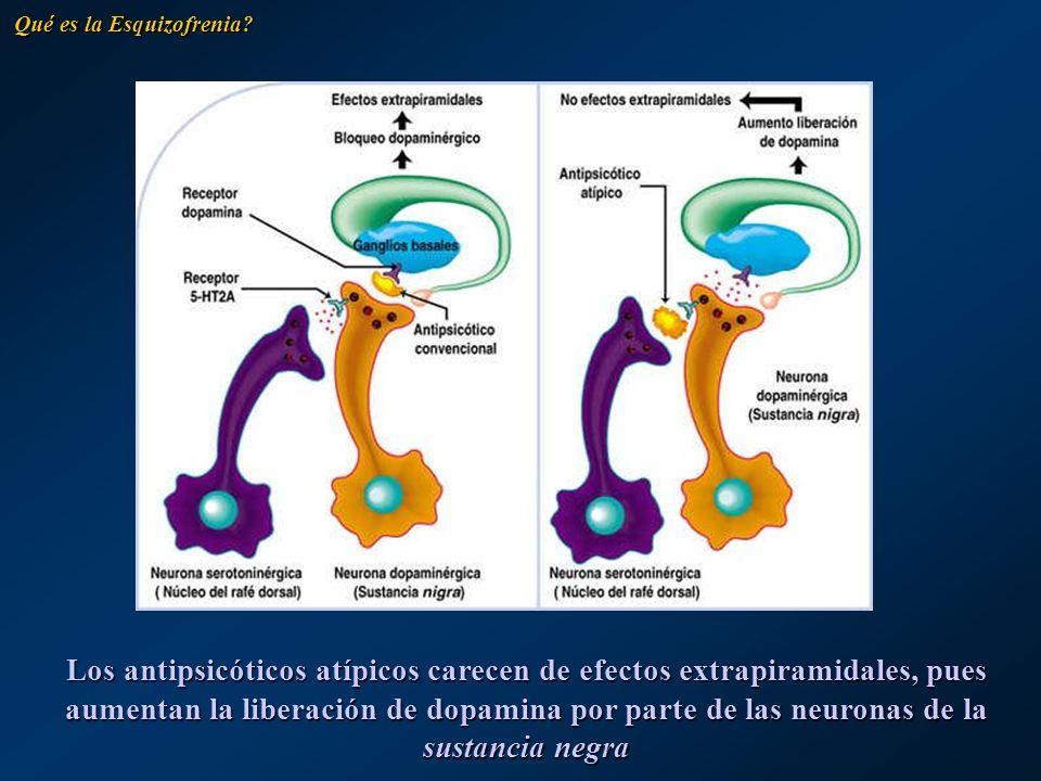 Los antipsicóticos atípicos carecen de efectos extrapiramidales, pues aumentan la liberación de dopamina por parte de las neuronas de la sustancia neg