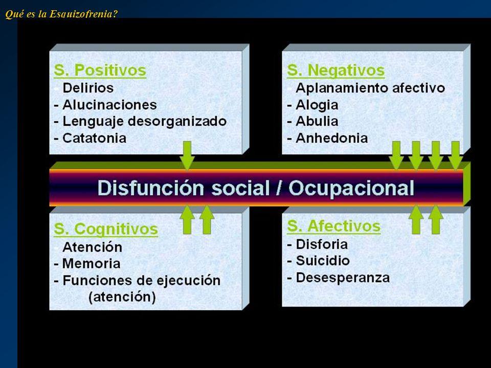 Esquizofrenia Paranoide DefiniciónDefinición –La esquizofrenia paranoide es una variación de la esquizofrenia que causa delirios concretos en la percepción de la realidad del sujeto.
