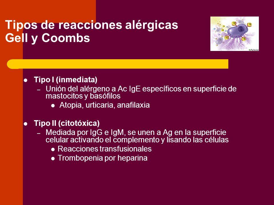 Tipo III (complejos Inmunes) – Mediada por IgG e IgM que forman complejos con Ag solubles, fijan el complemento y atraen PMN, que liberan enzimas y producen daño tisular Enfermedad del suero Algunas GN Tipo IV (hipersensibilidad mediada por células) Linfocitos T sensibilizados a un Ag Prueba de la tuberculina Tipo V (Idiopática) Eosinofilia.