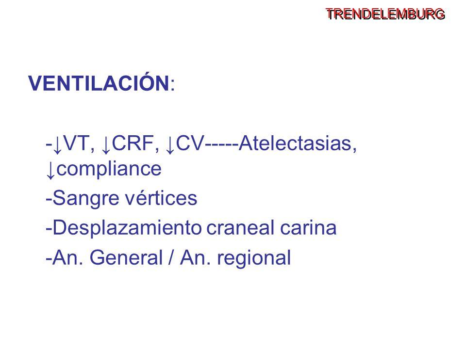 TRENDELEMBURG VENTILACIÓN: -VT, CRF, CV-----Atelectasias, compliance -Sangre vértices -Desplazamiento craneal carina -An. General / An. regional
