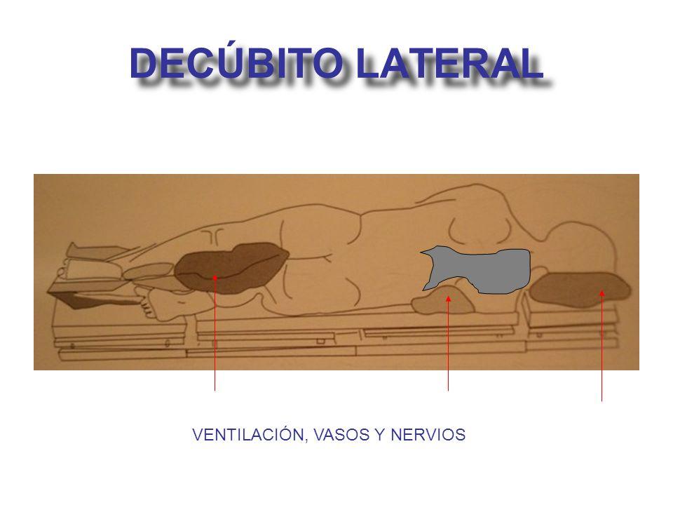 DECÚBITO LATERAL VENTILACIÓN, VASOS Y NERVIOS