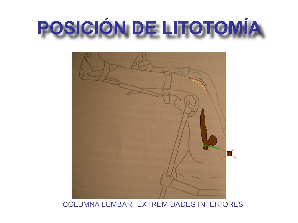 POSICIÓN DE LITOTOMÍA COLUMNA LUMBAR, EXTREMIDADES INFERIORES
