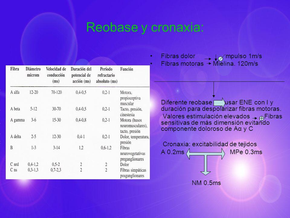 Reobase y cronaxia: Fibras dolor mpulso 1m/s Fibras motoras Mielina. 120m/s Diferente reobase usar ENE con I y duración para despolarizar fibras motor