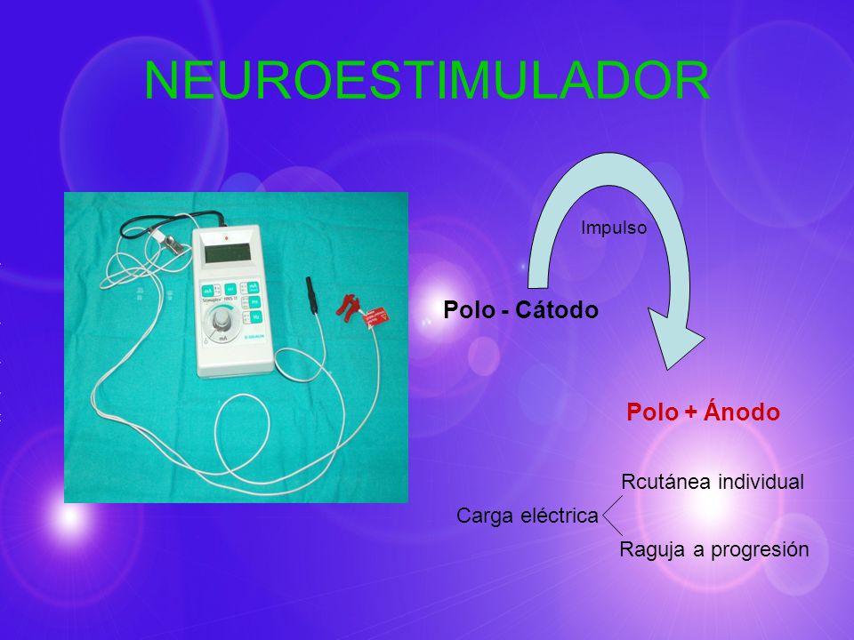 NEUROESTIMULADOR Impulso Polo - Cátodo Polo + Ánodo Rcutánea individual Carga eléctrica Raguja a progresión