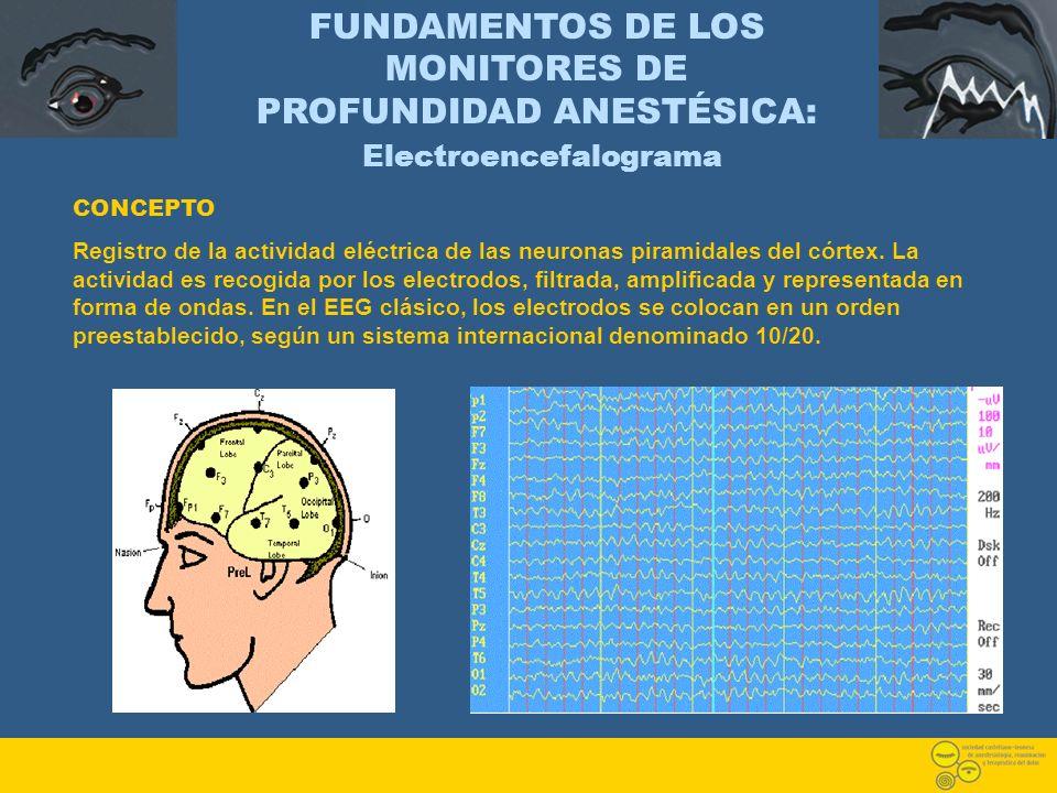 FUNDAMENTOS DE LOS MONITORES DE PROFUNDIDAD ANESTÉSICA: Electroencefalograma CONCEPTO Registro de la actividad eléctrica de las neuronas piramidales d