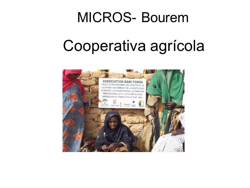 MICROS- Bourem Cooperativa agrícola