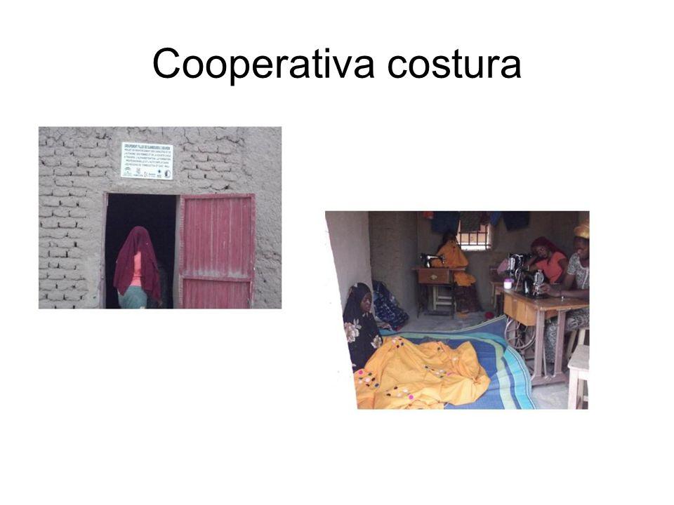 Cooperativa costura