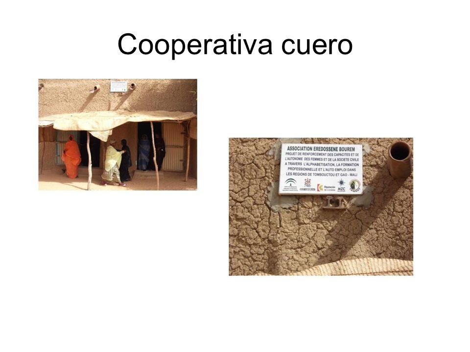 Cooperativa cuero