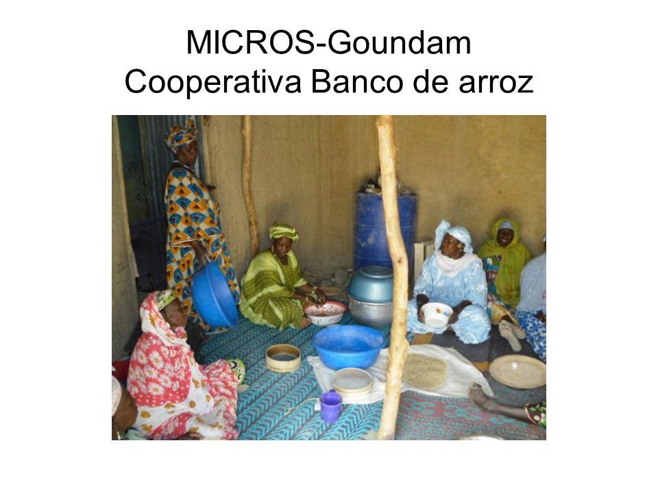 MICROS-Goundam Cooperativa Banco de arroz