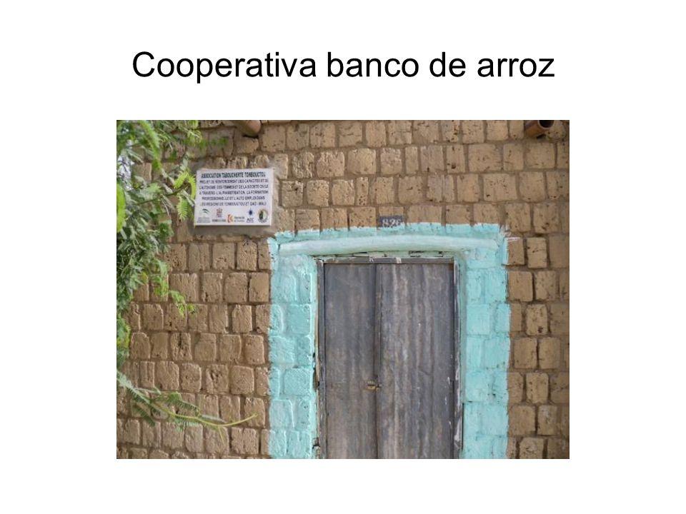 Cooperativa banco de arroz