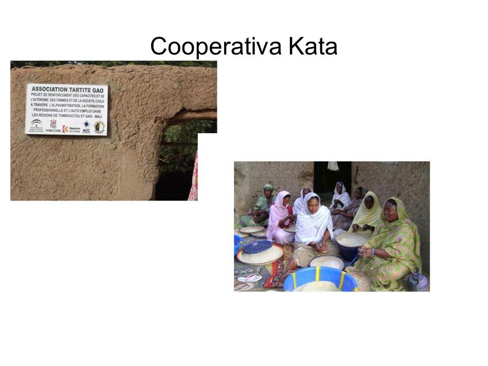 Cooperativa Kata