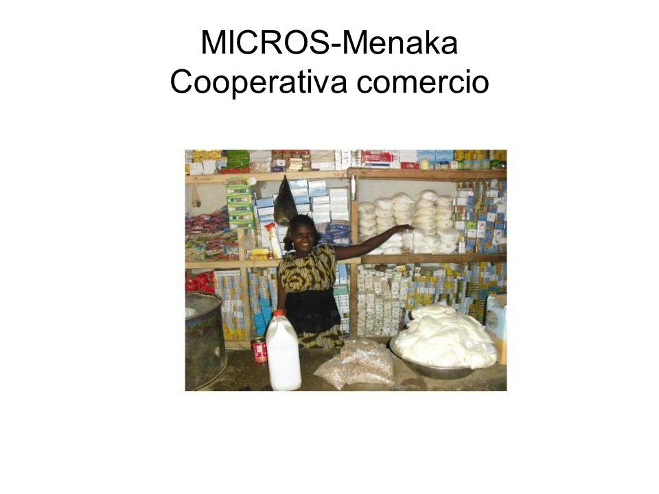 MICROS-Menaka Cooperativa comercio