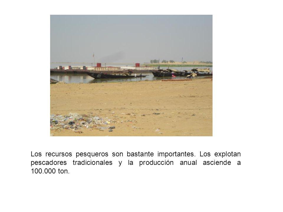 Centro Cívico de Menaka