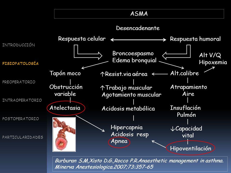 PROFILAXIS Tratamiento habitual Corticoides/β 2 Hidratación abundante INTRODUCCIÓN FISIOPATOLOGÍA PREOPERATORIO INTRAOPERATORIO POSTOPERATORIO PARTICULARIDADES Perioperative considerations for the patient with asthma and bronchospasm.Woods B.D., Sladen R.N..