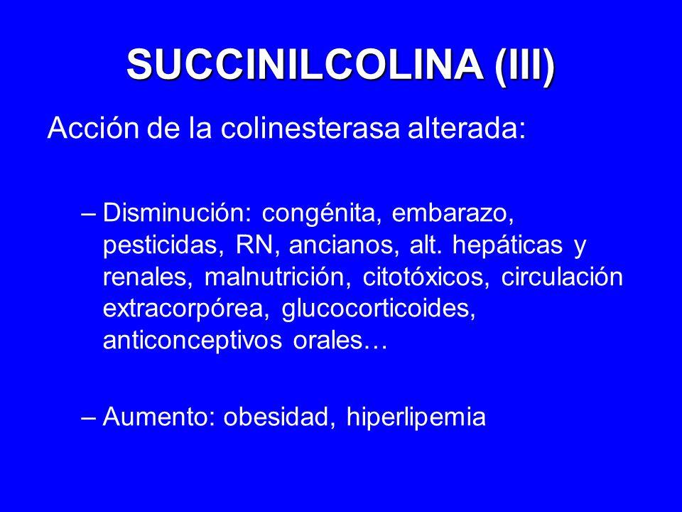 SUCCINILCOLINA (III) Acción de la colinesterasa alterada: –Disminución: congénita, embarazo, pesticidas, RN, ancianos, alt. hepáticas y renales, malnu