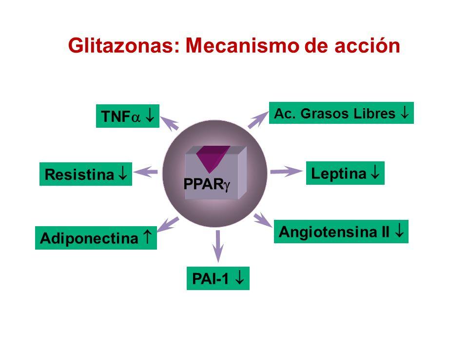 Glitazonas: Mecanismo de acción Adiponectina Resistina Angiotensina II TNF PAI-1 Ac. Grasos Libres Leptina PPAR