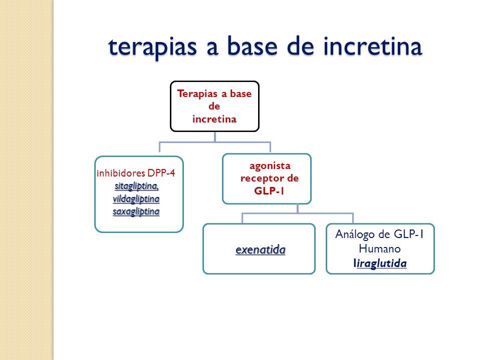 terapias a base de incretina terapias a base de incretina Análogo de GLP-1 Humano liraglutida exenatida agonista receptor de GLP-1 sitagliptina, vilda