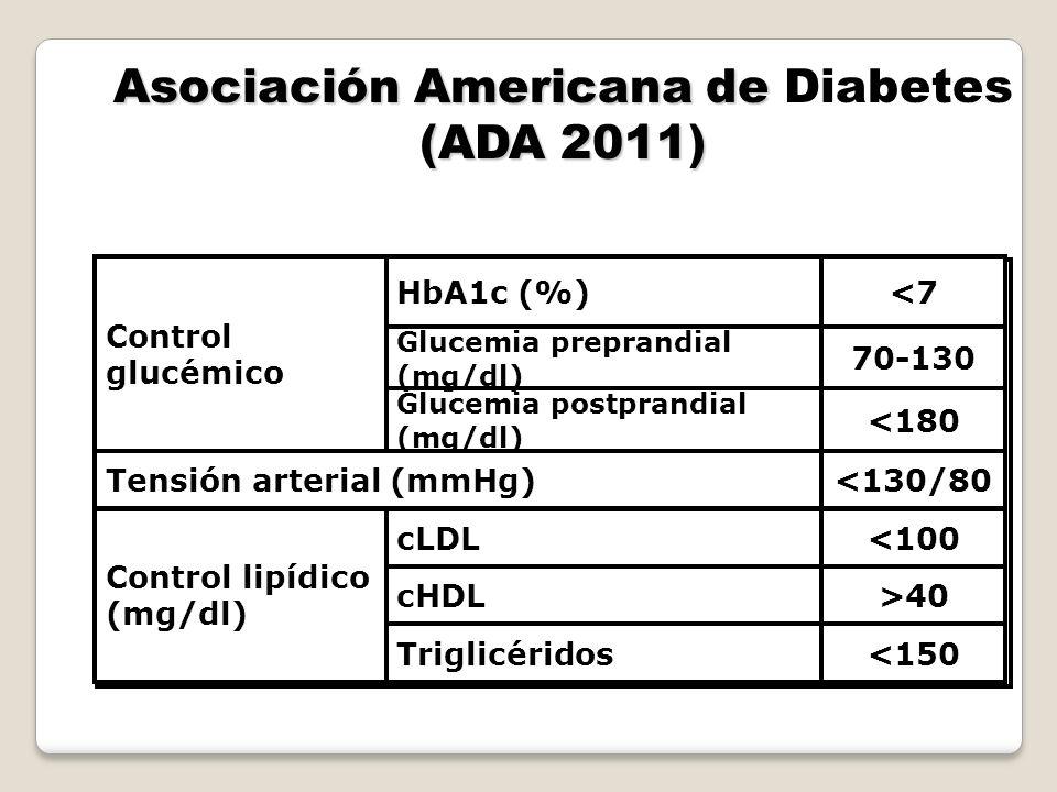 Asociación Americana de (ADA 2011) Asociación Americana de Diabetes (ADA 2011) <150Triglicéridos >40cHDL <100cLDL Control lipídico (mg/dl) <130/80Tens