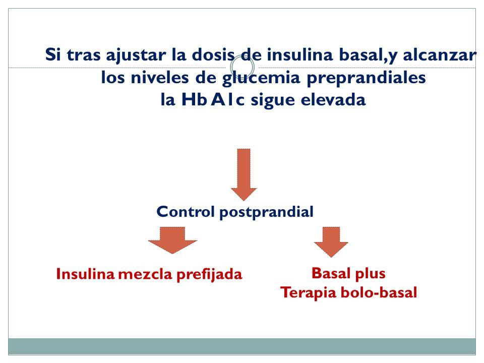 Si tras ajustar la dosis de insulina basal,y alcanzar los niveles de glucemia preprandiales la Hb A1c sigue elevada Control postprandial Insulina mezc