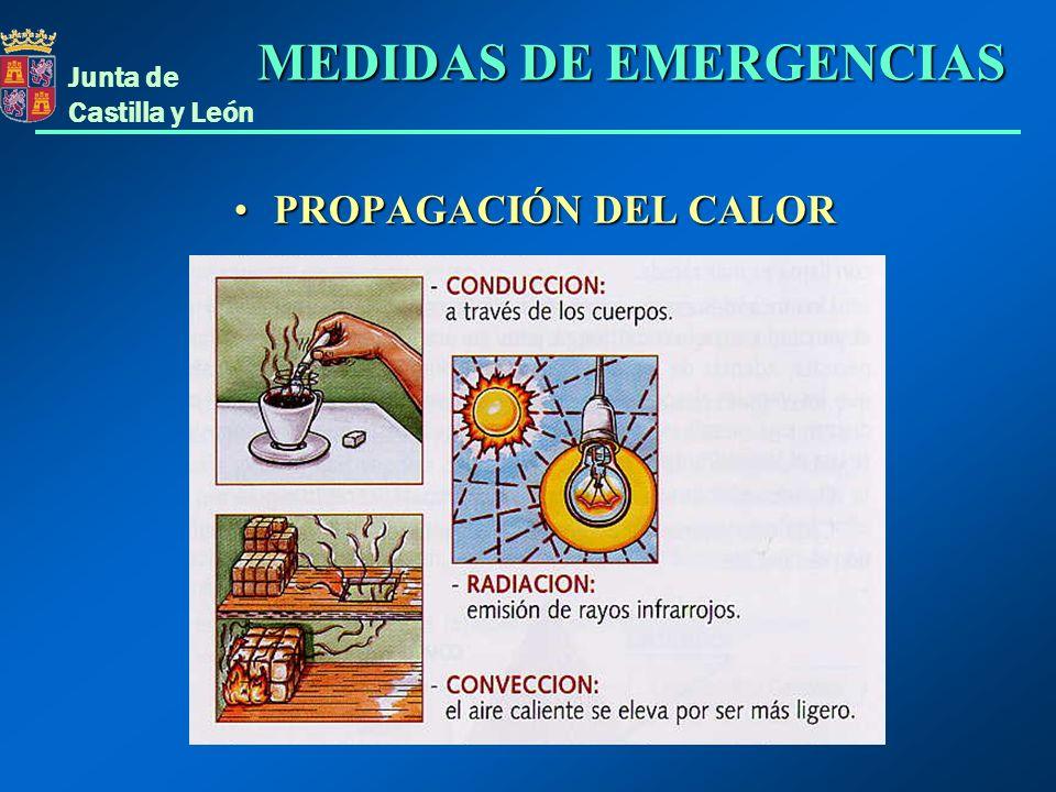 Junta de Castilla y León EVACUACIÓN MEDIOS TÉCNICOSMEDIOS TÉCNICOS -Actualización de inventarios -Mantenimiento MEDIOS HUMANOSMEDIOS HUMANOS -Composición de los Equipos de Emergencia y cargos.