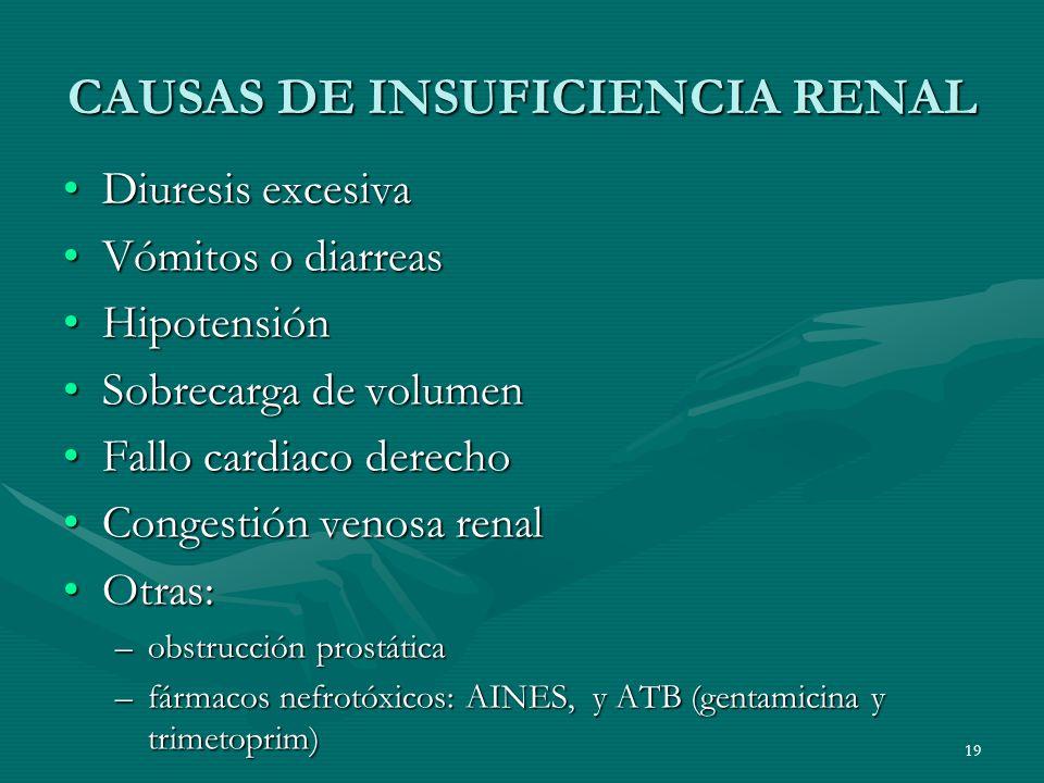 CAUSAS DE INSUFICIENCIA RENAL Diuresis excesivaDiuresis excesiva Vómitos o diarreasVómitos o diarreas HipotensiónHipotensión Sobrecarga de volumenSobr