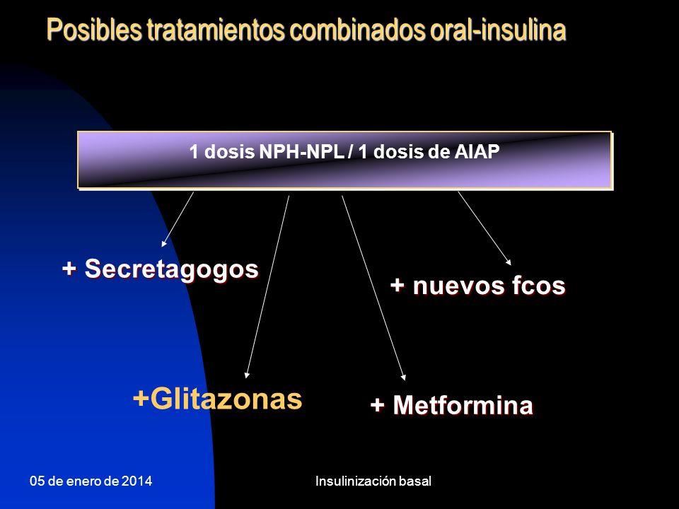05 de enero de 2014Insulinización basal AIAP + ADO 10.