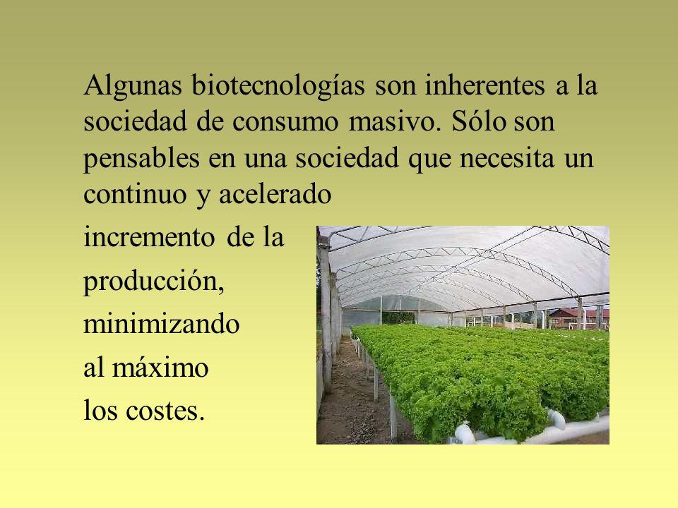 Algunas biotecnologías son inherentes a la sociedad de consumo masivo. Sólo son pensables en una sociedad que necesita un continuo y acelerado increme