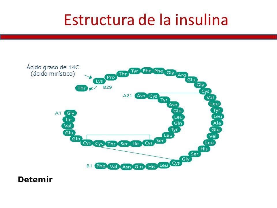 Estructura de la insulina Ácido graso de 14C (ácido mirístico) Detemir