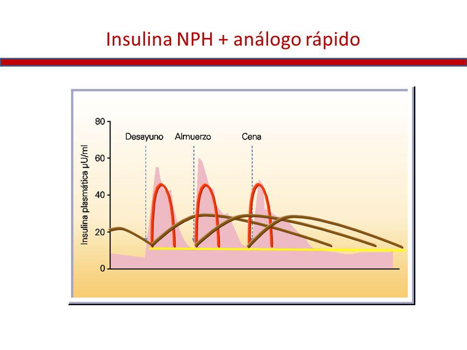 Insulina NPH + análogo rápido