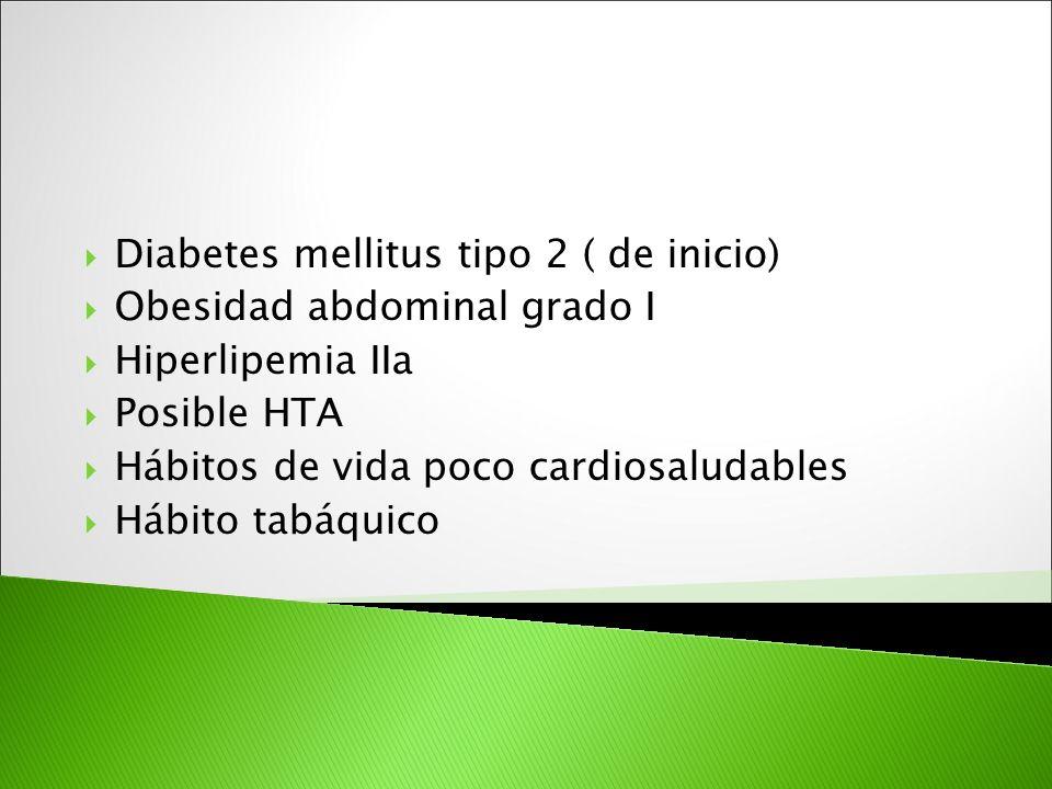 Diabetes mellitus tipo 2 ( de inicio) Obesidad abdominal grado I Hiperlipemia IIa Posible HTA Hábitos de vida poco cardiosaludables Hábito tabáquico
