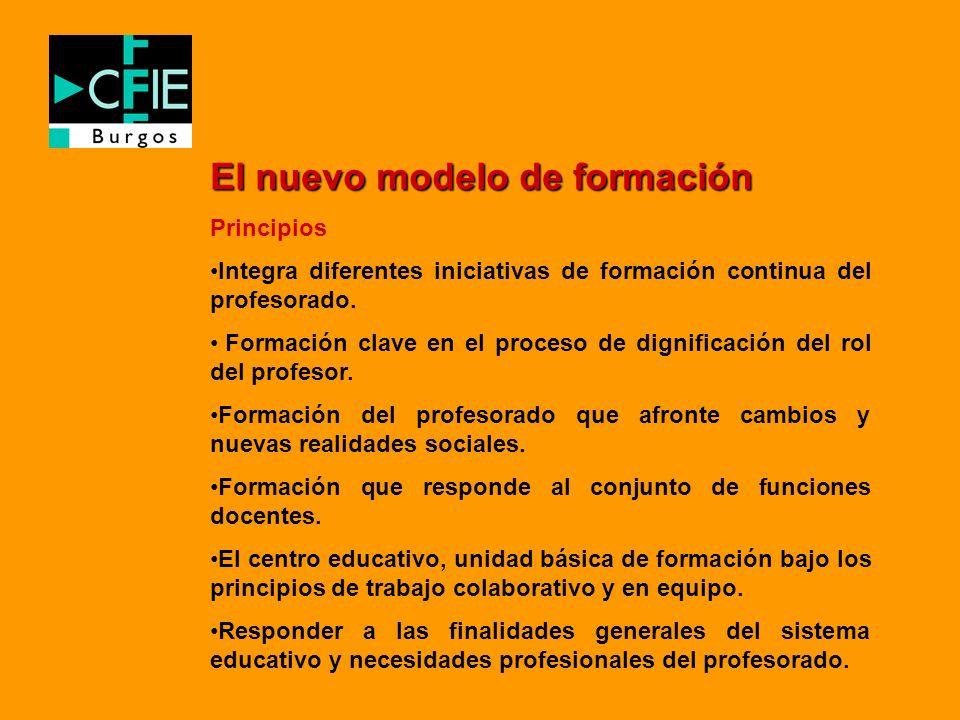 El nuevo modelo de formación Principios Integra diferentes iniciativas de formación continua del profesorado. Formación clave en el proceso de dignifi