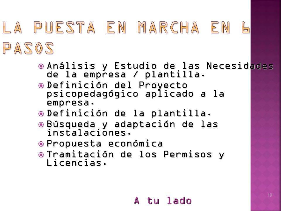 19 Análisis y Estudio de las Necesidades de la empresa / plantilla.