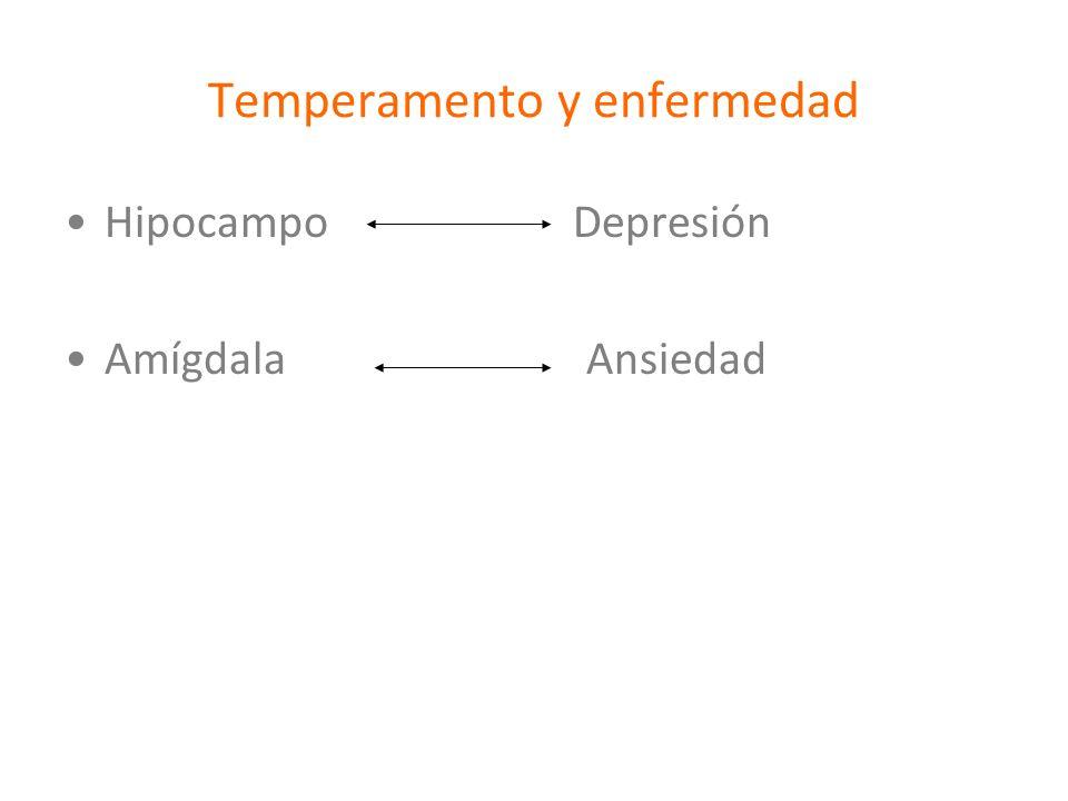 Temperamento y enfermedad Hipocampo Depresión Amígdala Ansiedad