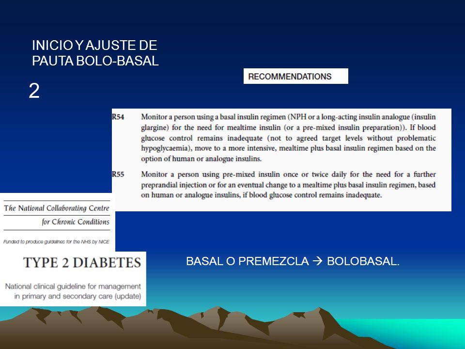 INICIO Y AJUSTE DE PAUTA BOLO-BASAL 2 BASAL O PREMEZCLA BOLOBASAL.