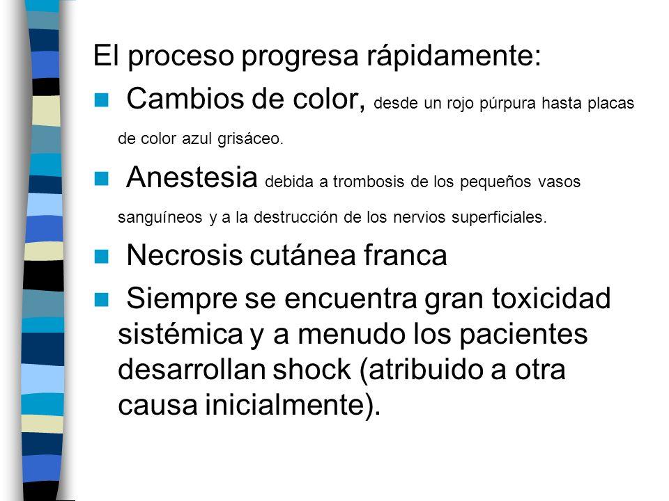 El proceso progresa rápidamente: Cambios de color, desde un rojo púrpura hasta placas de color azul grisáceo. Anestesia debida a trombosis de los pequ
